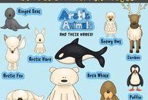 Habitats | Arctic Animals