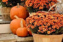 Fall...my favorite season