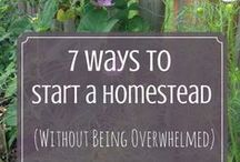 (TAF) The Homestead Life / The spirit of homesteading: Intentional living, ways to make and save money, living the good life, simple living