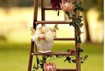Lovely Ladders