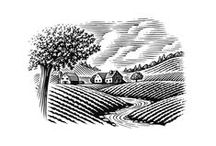 Linework / Engravings, Lithographs, Woodcuts, Linocuts, etc.