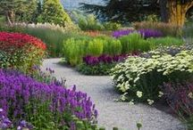 Gardens & Outdoor Spaces / Gardening and outdoor looks, information, ideas, tutorials and projects for every Season / by Cathy Patzlaff