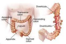 Digestive & Auto-Immune Diseases / by A.M.P. FLORACEL®