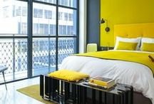 THE WILLIAM NYC | YELLOW / by The William NYC