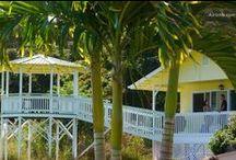 Hawai'i Vacation Rentals - Big Island / My vacation rentals on the Big Island of Hawai'i. For more info please 'like':  www.facebook.com/OLAKaiHawaiiRentals www.olakai-hawaii .com