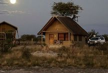 Travel Botswana / Reisetipps für einen Roadtrip durch Botswana Nationalparks, Reiseblog, Afrika Safari