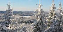 Reisetipps für den Winter / Reisen im Winter #reisetipp #winter #schnee #weihnachten #reisen