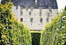 Home / by Meghan O'Toole