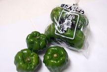 信州の伝統野菜 / 丸友中部青果 「旬の青果」に登録してある「信州の伝統野菜」の一覧です。