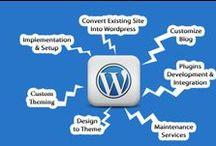 Website Designs & Development