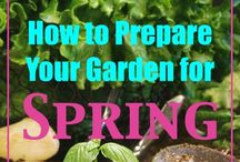 Garden Tips / by Peggy Enderle