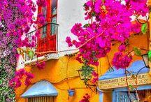 Visit Spain & Portugal / The ultimate Europe bucket lists for Spain and Portugal! El Camino de Santiago, Peneda-Geres National Park, Seville, Barcelona, Lisbon, Madrid, Porto, and so much more!