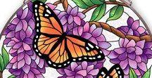 Бабочки Птицы Насекомые