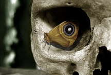 Haunting / Definition: Remaining in the consciousness; not quickly forgotten...  Hauntingly beautiful, macabre, melancholy, disturbing...