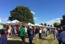 Annual Festivals in LaSalle County / Come to LaSalle County for year-round family fun.