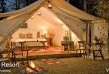 Glamping (glamorous camping)ideas for honeymooners