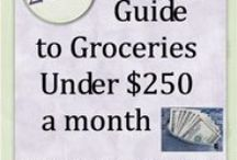 budget/coupons