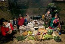 Peter Menzel, Hungry Planet / Фотограф Петер Менцель объехал 24 страны и везде снимал только один сюжет: среднестатистическая семья на фоне продуктов, купленных на неделю. В его серии представлены групповые портреты (30семей) с запасом продуктов на одну неделю.