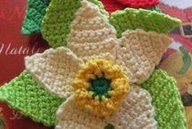 Rosa Ribeiro Croche