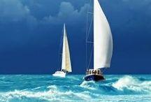 Azul claro, turquesa, piscina, royal, marinho, lilás e mais.