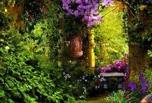 Jardins/varandas/exteriores