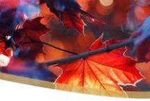 Four Seasons | Autumn / Autumn in Poland