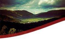 W obiektywie | Beskid Sądecki / Muszyna to urokliwa, górska miejscowość w Beskidzie Sądeckim - raj dla fotografów. Dzielimy się ich najpiękniejszymi pracami z tego regionu. | Muszyna is a charming mountain resort in Beskid Sądecki - a paradise for photographers. We share their most beautiful works from this region.