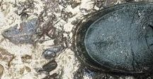 """presentacion libro dejarse llover / La escritora Paula Farias vino al Trotajueves para presentarnos su libro """"DEJARSE LLOVER"""".Libro y relato sobre el que el cineasta Fernando León de Aranoa creo el guión de su película """"UN DÍA PREFECTO"""" que proyectaremos aquí también en la librería el sábado 20 de Junio como prólogo de esta presentación."""