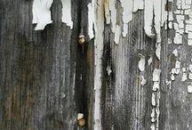 woody / by Val McLaren