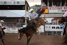Action! / Rodeo Action, Monster Trucks, Derbys & MORE! / by Colorado's State Fair
