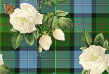 Tartan Love / I love tartan - a very ancient European pattern, first woven by continental Europeans in the Stone Age. / by L i l y O a k e