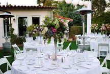 Backyard Wedding / Wedding Fun in the Backyard or Park