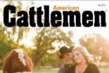 American Cattlemen / Showcasing the American Cattlemen livestyle
