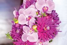 Orchid/Violet Wedding / Pantone Color for 2014 - Radiant Orchid/ Remix with Violet