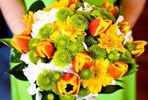 Tangerine/Lime Wedding / Orange, Tangerine & Lime Remix for Weddings.