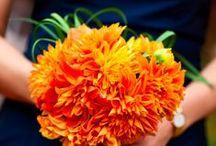 Navy/Tangerine Wedding / Orange, Tangerine & Navy Blue Wedding
