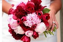 Red/Pink Wedding / Shades of Pink & Red for Valentine Theme Wedding