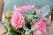 Pink & Mint Wedding / Pale Pink & Mint Green for Weddings