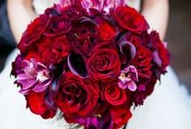 Red/Purple Wedding / Shades of Purple Mixed with Red