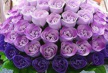 Purple Ombre Wedding / Wedding in shades of Purple