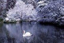 Winter / Zimy, vanocí a všeho okolo.:)