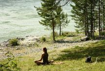 mindfulness/mental health