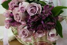 Floral Inspiration / Welcome to my boards. Pin whatever inspires you.....no pin limits!!!!!