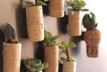 Recycle, reuse, reduce, repurpose / by ivonne gutierrez