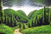Aquascapes / Ever seen a miniature landscape so perfectly to scale that it messes with your brain? Now imagine that underwater! Meet  the incredulous world of Aquascaping!