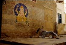 India, Rajasthan / Viaggio effettuato nel lontano settembre 1992