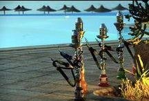 Egitto, Marsa Alam / Una settimana nelle calde acque del Mar Rosso con lunghi bagni di mare in mezzo a pesci colorati