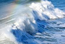 Motion of the Ocean / Beautiful pics of the Ocean & Waves  -----   Also Fish & Marine Mammal like; --   Dolphins,  Whales, See Lions, Penguins, Seals, Turtles  and many more living creatures & plants under the sea.