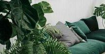 EINRICHTUNGSIDEEN IN GRÜN |INTERIOR, DEKO, PFLANZEN / Egal ob grünes Sofa, grüne Kommode, grüner Teppich oder wunderschöne Pflanzenvielfalt - dieses Board widme ich meine liebsten Interior-Farbe Grün. Wie gut man diese Farbe in die eigenen vier Wände integrieren kann, liefern euch zahlreiche Einrichtungsideen hier auf diesem Interior-Board. Mehr Interior Inspirationen und Tipps auf www.whoismocca.com