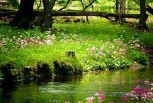 ~ spring ~